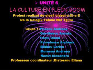 UNIT� 6 LA CULTURE EN PLEIN  BOOM Proiect realizat  de  elevii clasei  a-XI-a E
