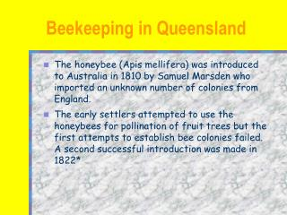 Beekeeping in Queensland