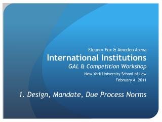 Eleanor Fox & Amedeo Arena International Institutions GAL & Competition Workshop