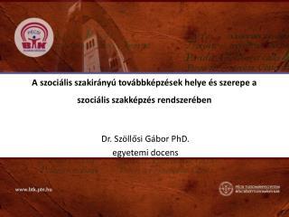 A szociális szakirányú továbbképzések helye és szerepe a szociális szakképzés rendszerében