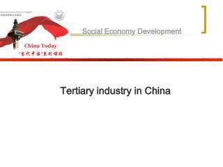 Social Economy Development