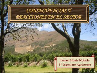 CONSECUENCIAS Y REACCIONES EN EL SECTOR