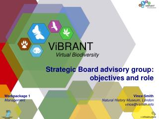 Strategic Board advisory group: objectives and role