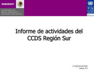 Informe de actividades del  CCDS Región Sur