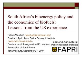 South Africa's bioenergy policy and the economics of biofuels:  Lessons from the US experience
