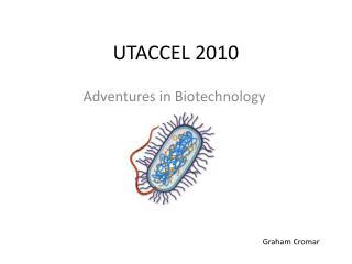 UTACCEL 2010