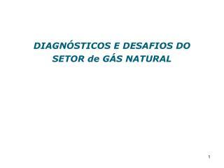 DIAGN�STICOS E DESAFIOS DO SETOR de G�S NATURAL