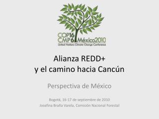 Alianza REDD+  y el camino hacia Cancún