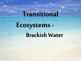 Transitional Ecosystems -		 	Brackish Water