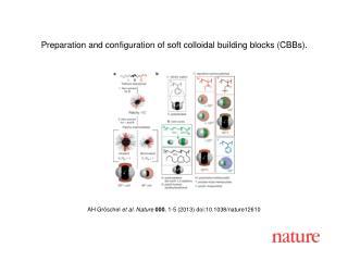 AH Gröschel  et al.  Nature  000 ,  1 - 5  (2013)  doi:10.1038/nature12610