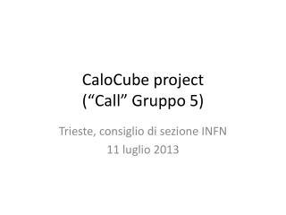"""CaloCube project (""""Call"""" Gruppo 5)"""