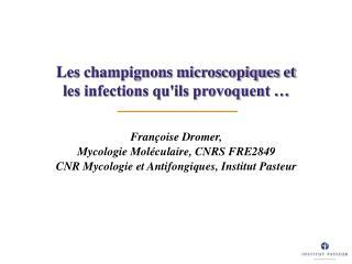 Les champignons microscopiques et  les infections qu'ils provoquent …