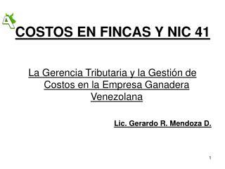COSTOS EN FINCAS Y NIC 41