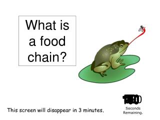 The relationship between plants and animals that shows who eats what. Energy is transferred from one organism to another