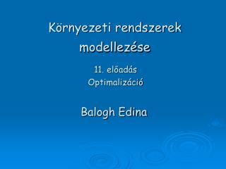 K�rnyezeti rendszerek modellez�se