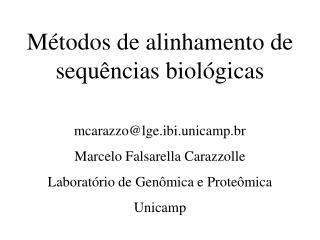 Métodos de alinhamento de sequências biológicas mcarazzo@lge.ibi.unicamp.br