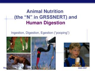 "Animal Nutrition  (the ""N"" in GRSSNERT) and Human Digestion"