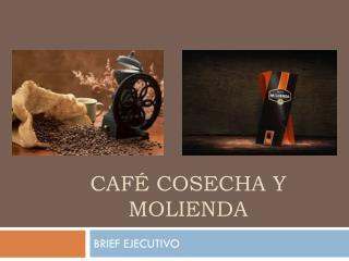 Café cosecha y molienda