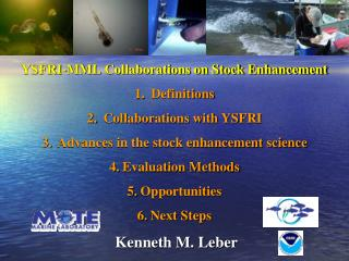 YSFRI-MML Collaborations on  Stock Enhancement