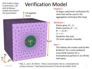 Verification Model