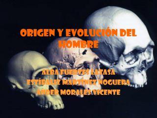 ORIGEN Y EVOLUCI N DEL HOMBRE