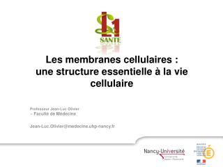 Professeur Jean-Luc Olivier > Faculté de Médecine Jean-Luc.Olivier@medecine.uhp-nancy.fr