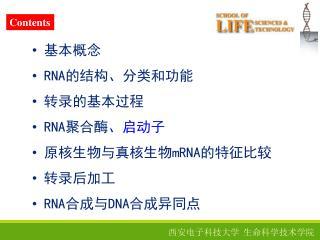 基本概念 RNA 的结构、分类和功能 转录的基本过程 RNA 聚合酶 、启动子 原核生物与真核生物 mRNA 的特征比较 转录后加工 RNA 合成与 DNA 合成异同点