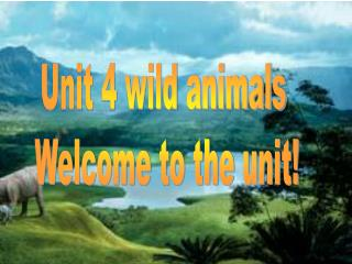 Unit 4 wild animals  Welcome to the unit!