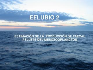EFLUBIO 2