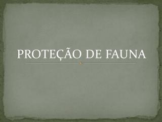 PROTEÇÃO DE FAUNA