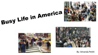 Busy Life in America