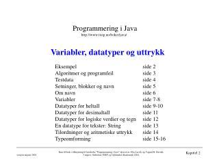 Variabler, datatyper og uttrykk