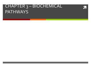 CHAPTER 3 – BIOCHEMICAL PATHWAYS