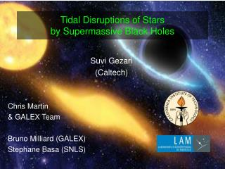 Tidal Disruptions of Stars  by Supermassive Black Holes