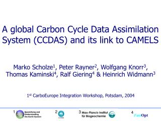 A global Carbon Cycle Data Assimilation System (CCDAS) and its link to CAMELS