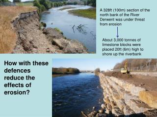 A 328ft (100m) section of the north bank of the River Derwent was under threat from erosion