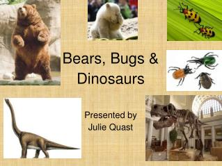 Bears, Bugs & Dinosaurs Presented by Julie Quast