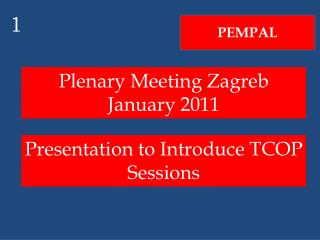 Plenary Meeting Zagreb January 2011