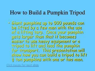 How to Build a Pumpkin Tripod