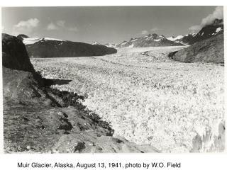 Muir Glacier, Alaska, August 13, 1941, photo by W.O. Field