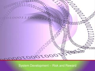 System Development – Risk and Reward