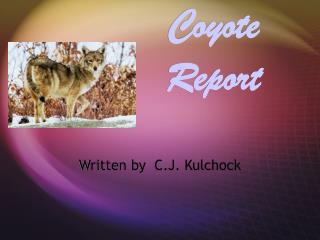 Coyote Report