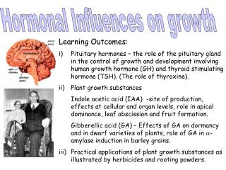 Hormonal Influences on growth