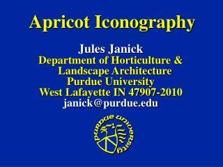 Apricot Iconography