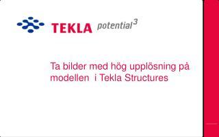 Ta  bilder  med  hög upplösning på modellen   i Tekla Structures