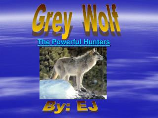 The Powerful Hunters