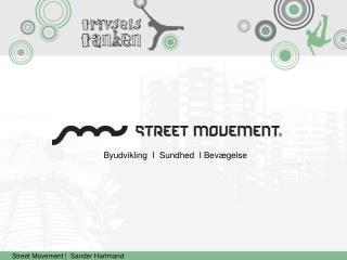 Street Movement  |   Sander  Hartmand