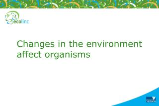 Changes in the environment affect organisms