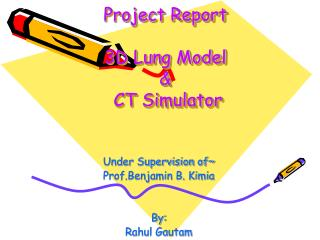 Project Report  3D Lung Model    CT Simulator