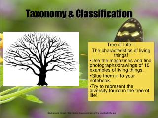 Taxonomy & Classification